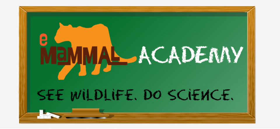 eMammal Academy! See wildlife, do science.